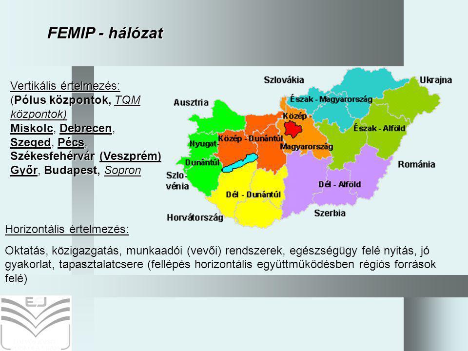 11 Horizontális értelmezés: Oktatás, közigazgatás, munkaadói (vevői) rendszerek, egészségügy felé nyitás, jó gyakorlat, tapasztalatcsere (fellépés horizontális együttműködésben régiós források felé) Vertikális értelmezés: (Pólus központok, TQM központok) Miskolc, Debrecen, Szeged, Pécs, Székesfehérvár (Veszprém) Győr, Budapest, Sopron FEMIP - hálózat