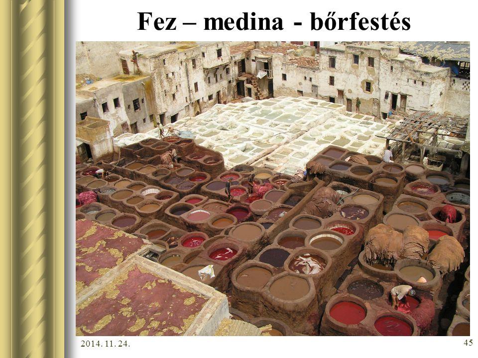 2014. 11. 24. 44 Fez - medina