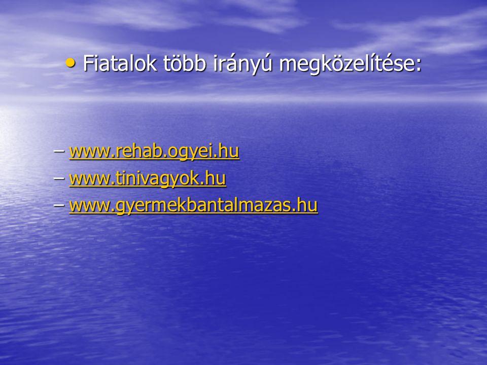 Fiatalok több irányú megközelítése: Fiatalok több irányú megközelítése: –www.rehab.ogyei.hu www.rehab.ogyei.hu –www.tinivagyok.hu www.tinivagyok.hu –w