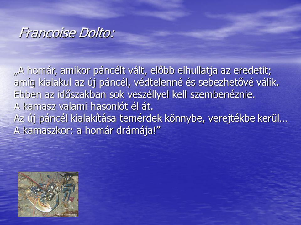 """Francoise Dolto: """"A homár, amikor páncélt vált, előbb elhullatja az eredetit; amíg kialakul az új páncél, védtelenné és sebezhetővé válik. Ebben az id"""