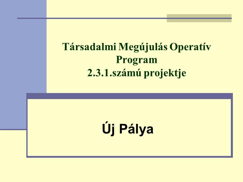 Társadalmi Megújulás Operatív Program 2.3.1.számú projektje Új Pálya