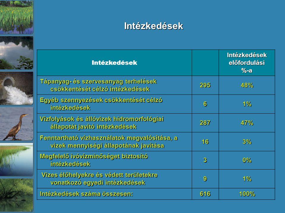 Intézkedések Intézkedések Intézkedések előfordulási %-a Tápanyag- és szervesanyag terhelések csökkentését célzó intézkedések 29548% Egyéb szennyezések csökkentését célzó intézkedések 61% Vízfolyások és állóvizek hidromorfológiai állapotát javító intézkedések 28747% Fenntartható vízhasználatok megvalósítása, a vizek mennyiségi állapotának javítása 163% Megfelelő ivóvízminőséget biztosító intézkedések 30% Vizes élőhelyekre és védett területekre vonatkozó egyedi intézkedések Vizes élőhelyekre és védett területekre vonatkozó egyedi intézkedések91% Intézkedések száma összesen: 616100%