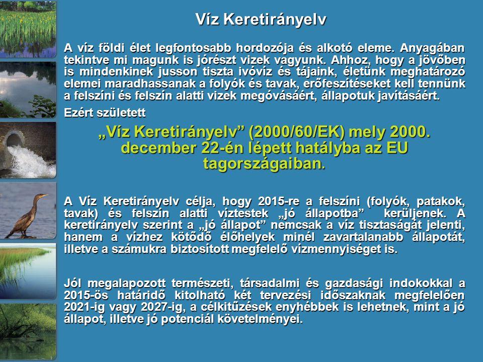 A vízgyűjtő-gazdálkodás tervezésének főbb jellemzői A VKI megvalósításának eszköze a Vízgyűjtő- gazdálkodási Terv 2009.