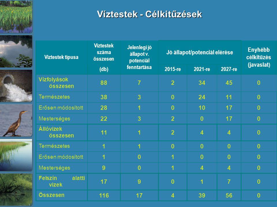 Víztestek - Célkitűzések Víztestek típusa Víztestek száma összesen Jelenlegi jó állapot v.