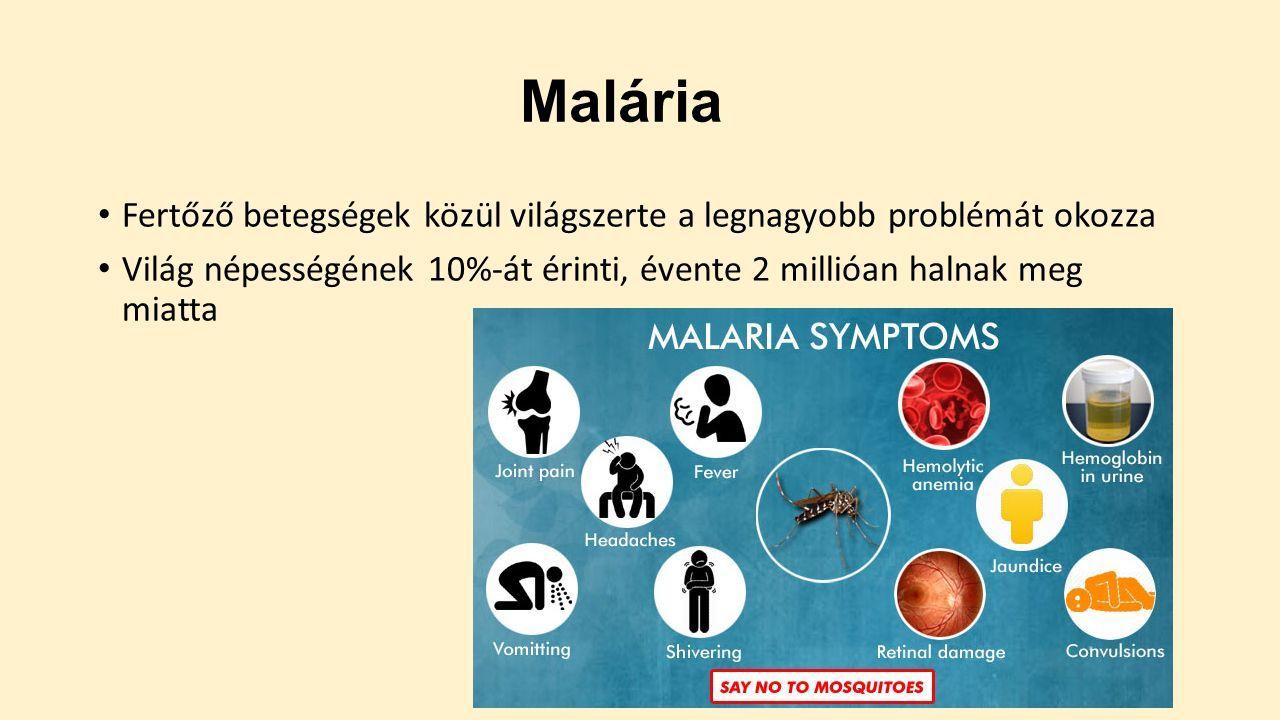 Parazitakezelési tippek