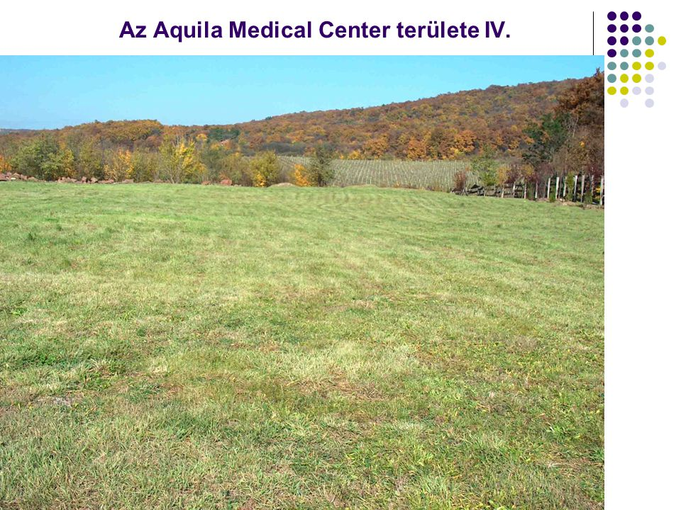 Az Aquila Medical Center területe IV.