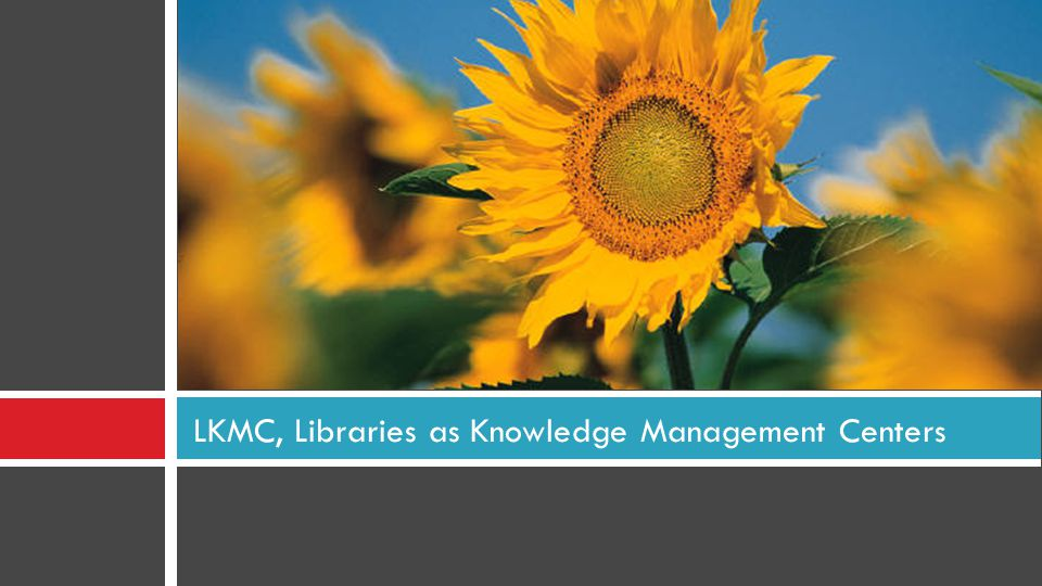 LKMC, Libraries as Knowledge Management Centers