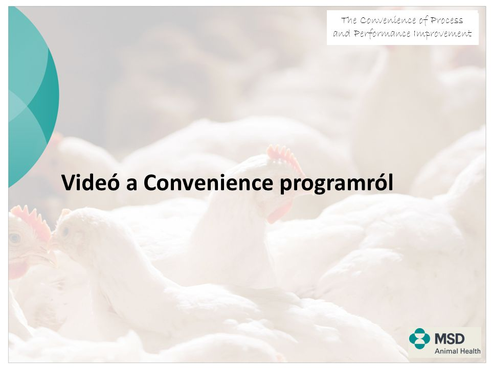 The Convenience of Process and Performance Improvement Videó a Convenience programról