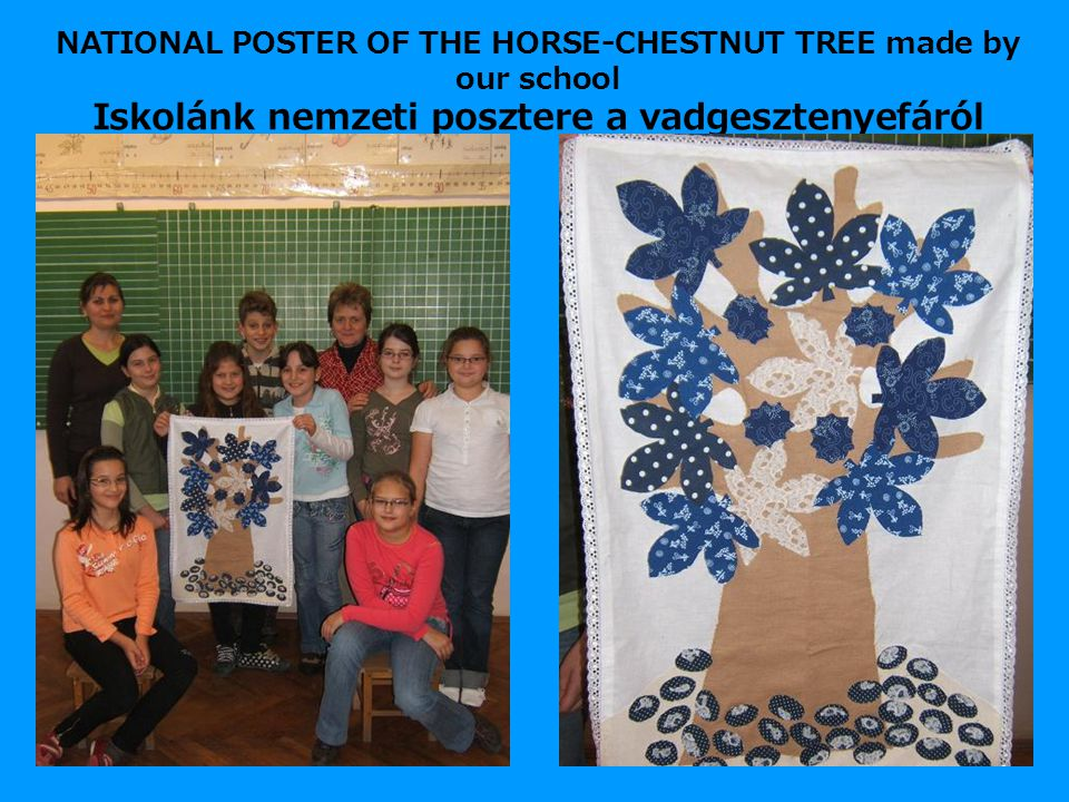 NATIONAL POSTER OF THE HORSE-CHESTNUT TREE made by our school Iskolánk nemzeti posztere a vadgesztenyefáról