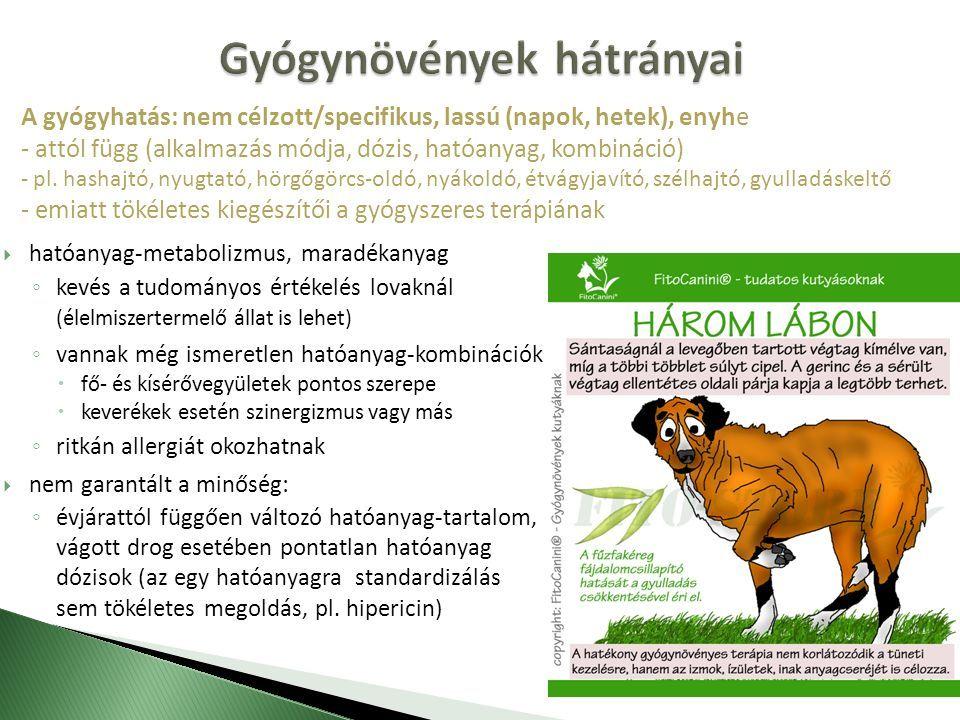 állatok melegítő balzsamja ízületekhez ízületi betegség kategóriája